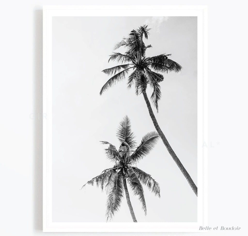 Grey Palm Tree Art Print