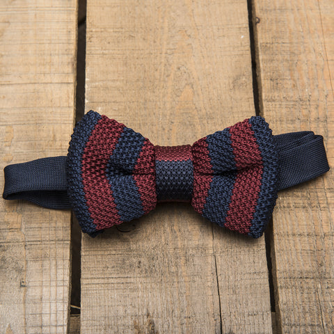 Blue and Burgundy Striped Bow Tie