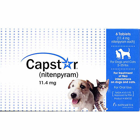 Capstar (24 hour flea medication)