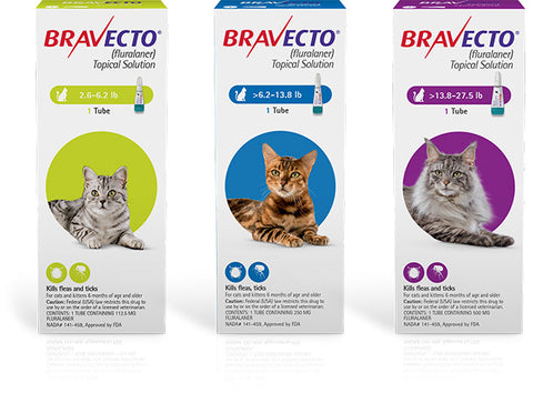 Bravecto Topical - Feline