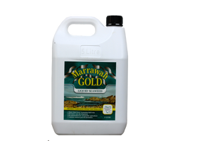 Marrawah Gold 5 Litre