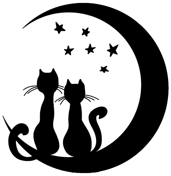 Moon Cat Love
