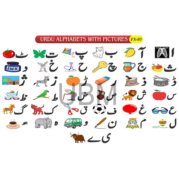 Urdu Alphabets With Pictures Fs-05 Coloured