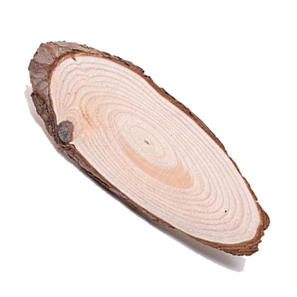 Wooden Slice Oval 10 Inch