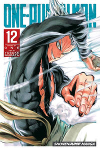 ONE PUNCH MAN VOL 12 GN