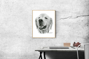 Bespoke Pet Portraits