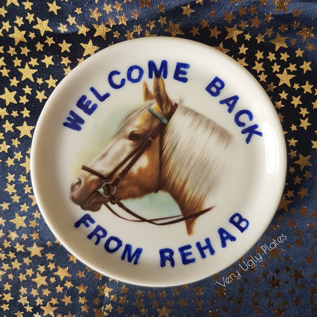 welcome back from rehab mini plate