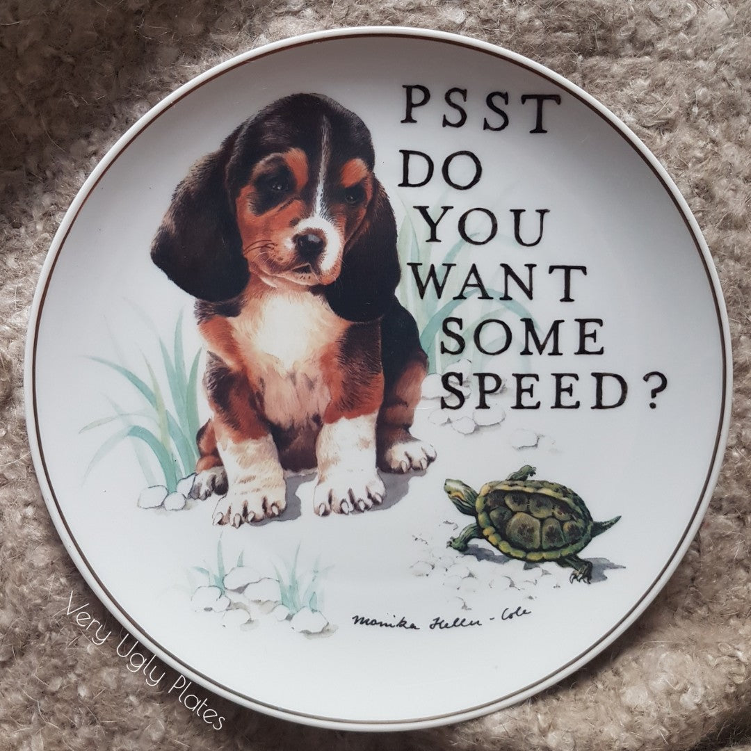 do you want some speed wall plate