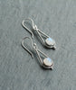 Venus Rainbow Moonstone Sterling Silver Earrings
