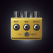Golden Boy Transparent Overdrive