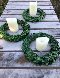 Boxwood in a wreath
