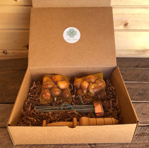 Gardening Gift Box - Fall/Winter Tulip Planting Set  (Bulb Planter, Copper Garden Markers and Tulips