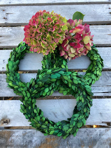 dried boxwood wreaths small