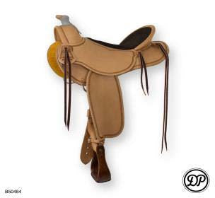 DP Western Saddle Range