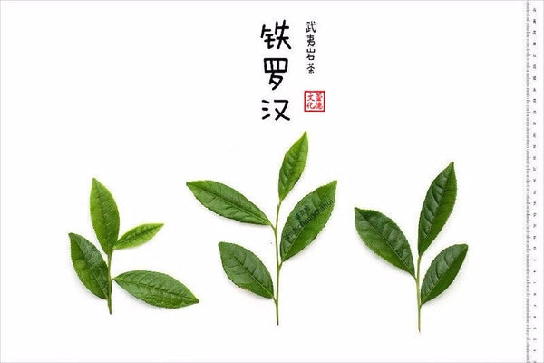 Iron Arhat - 铁罗汉 (Tie Luo Han) 50g
