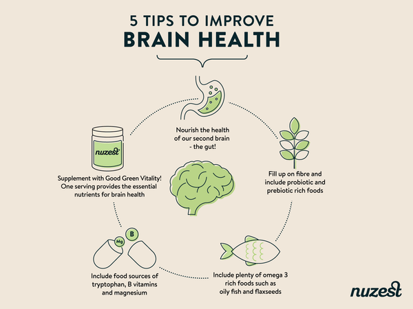 How To Optimise Brain Function And Health
