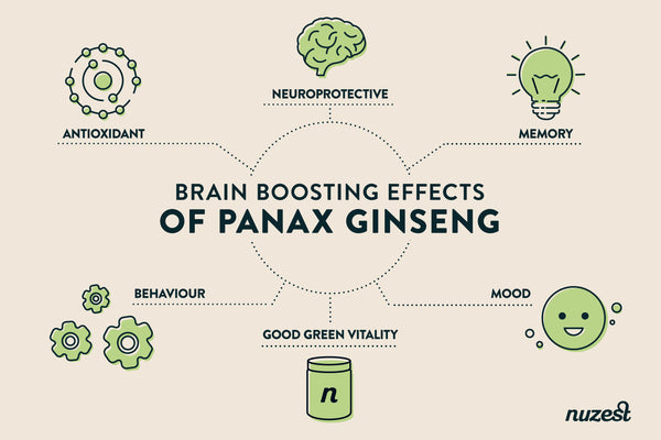 The benefits of Panax Ginseng in Good Green Vitality