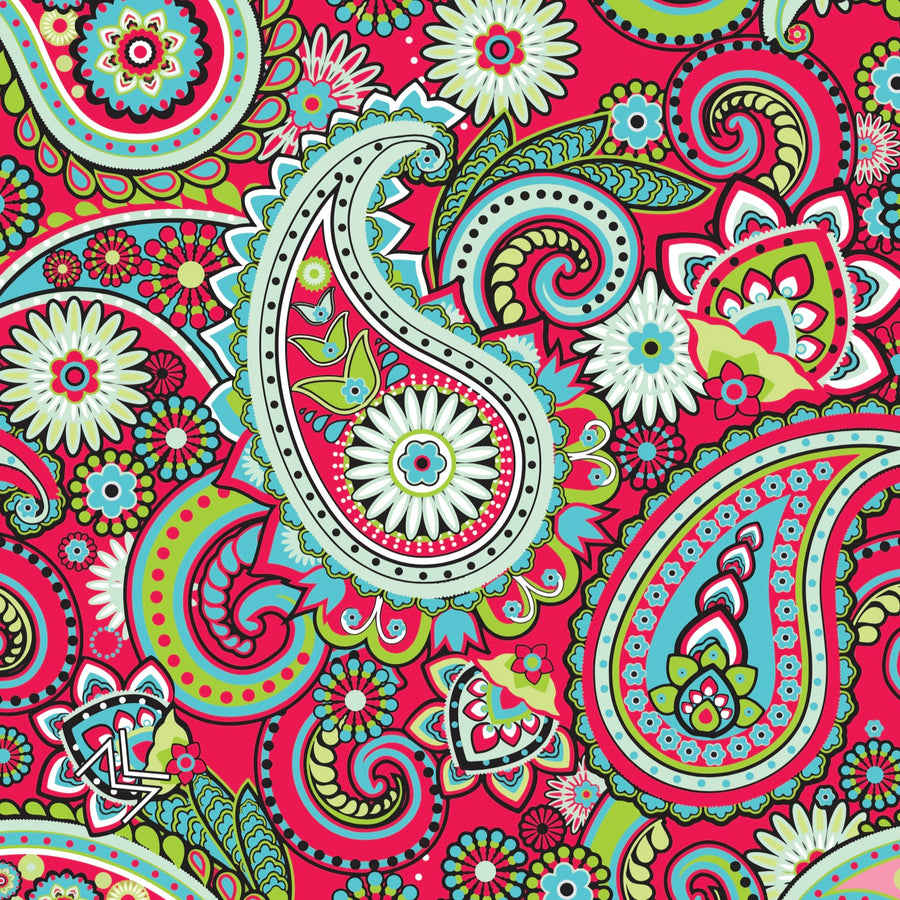 The Acid Paisley - Mandana