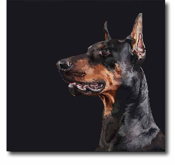 collections/Dogs-png.png