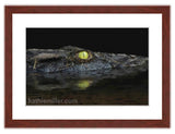 American Alligator painting by award winning artist Kathie Miller.