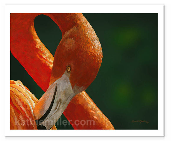 American Flamingo painting by award winning artist Kathie Miller.