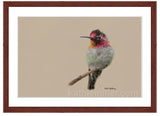 Anna's Hummingbird painting by award winning artist Kathie Miller.