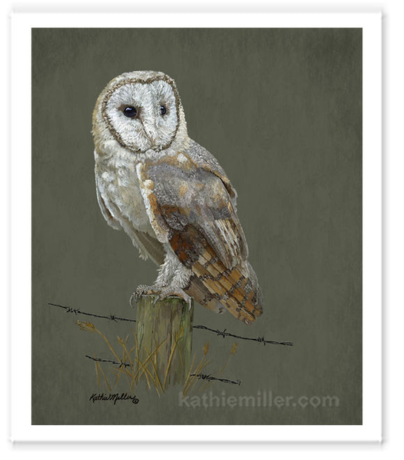 Barn Owl painting by award winning artist Kathie Miller.