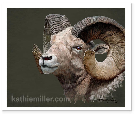 Big Horned Sheep portrait painting by award winning artist Kathie Miller.