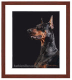 Black Doberman