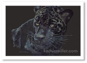 Portrait of a black jaguar on a black background by award winning artist Kathie Miller.