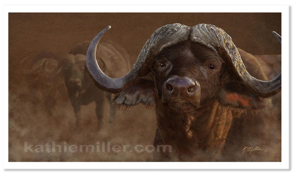 Cape Buffalo painting by award winning artist Kathie Miller. Prints available.