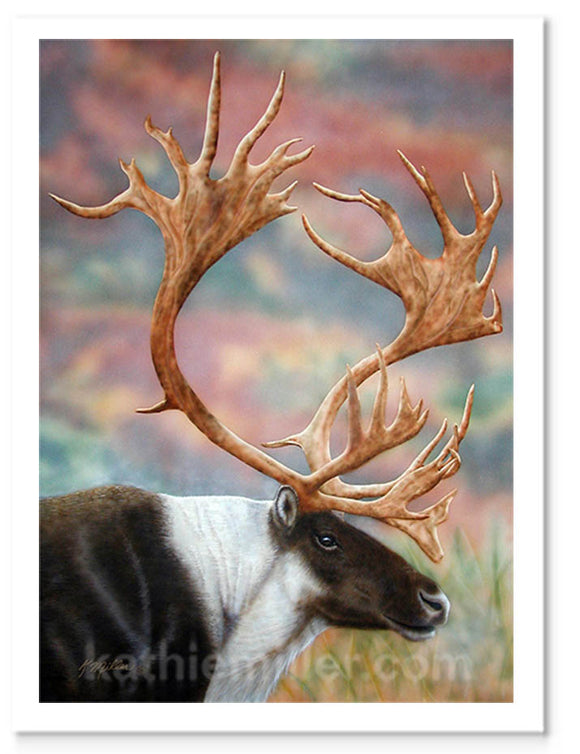 Acrylic painting of a caribou with a full set of antlers by award winning artist Kathie Miller.
