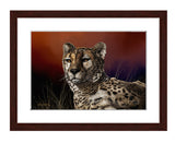 Cheetah Portrait by award winning artist Kathie Miller