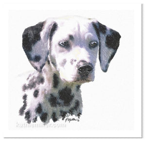 Portrait of a dalmation puppy by award winning artist Kathie Miller.