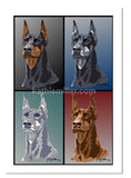 Poster style painting of the 4 color variations of the doberman pinscher by award winning artist Kathie Miller.