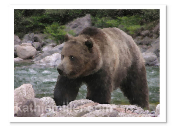 Pastel painting of a grizzly bear hunting along the river by award winning artist Kathie Miller
