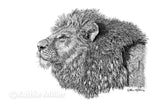 Lion Portrait - Ink by award winning artist Kathie Miller
