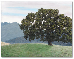"Original oil painting of a lone oak tree in the hills of California. 8"" x 10"" Oil on panel by award winning artist Kathie Miller. Free shipping to the lower 48 states. Painting is shipped unframed."