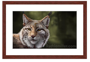 Lynx Portrait by award winning artist Kathie Miller.