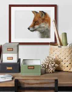 Red Fox-Kathie Miller
