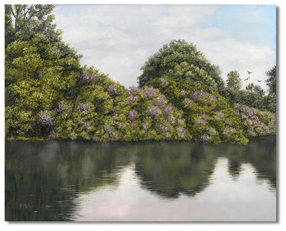 Original hyper realistic oil painting of rhododendrons in full blooms by a river, 8 x 10 Oil on panel by award winning artist Kathie Miller. Free shipping to the lower 48 states. Painting is shipped unframed.