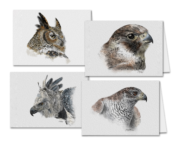 Set of 4 Greeting Cards Birds of Prey-Kathie Miller