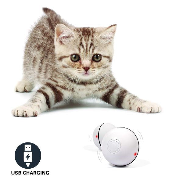 360° Self Rotating Ball Interactive Cat Toy