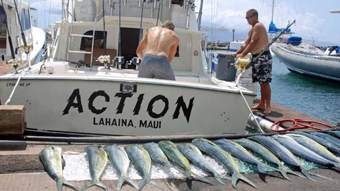 Action Fishing With Hawaii Deep Sea Fishing
