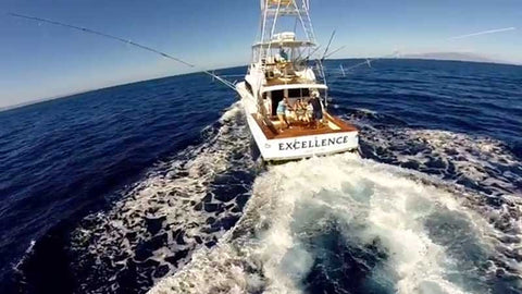 Excellence wake