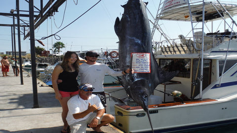 Ohana sportfishing adventure, Marlin