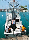 Marlin Grando, Blue Marlin catch, kona fishing