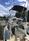 Deep Sea, back of boat, Haleiwa, fishing