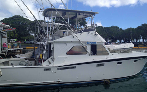 Side View Sea Verse Sport Fishing Hawaii Deep Sea Fishing
