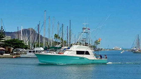 Strikeology after its new painted hull in Oahu